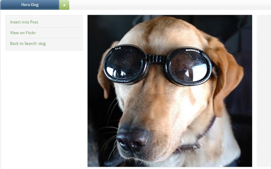 2014 09 05 182604 PhotoDropperでアイキャッチ画像を自動インストールする方法